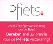 pvelo_300x250_nl[1]